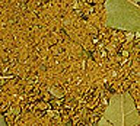 Ropa Vieja Cuban Seasoning 8oz