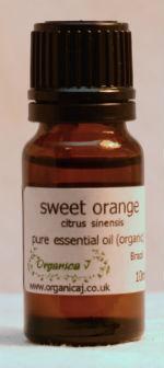 Sweet Orange (citrus sinensis) 0E011