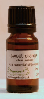 Sweet Orange (citrus sinensis)