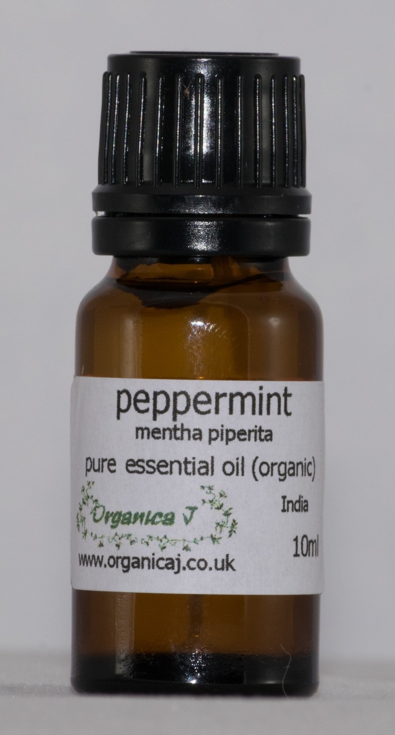 Peppermint (mentha x piperita)