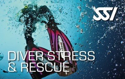 Stress and Rescue July 13, 2019