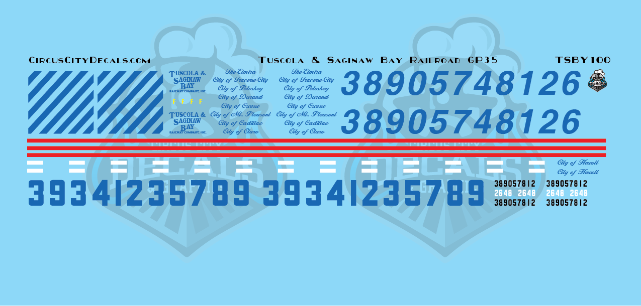Tuscola and Saginaw Bay Railway TSBY GP35 N Scale Decal Set