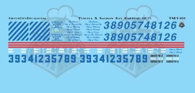 Tuscola and Saginaw Bay Railway TSBY GP35 N Scale Decal Set
