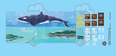 BNSF Coalporter Bethgon #668785 Whale Graffiti N Scale