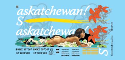 Saskatchewan! Grain Hopper Girl Graffiti Full Decal set S Scale SKNX 397367