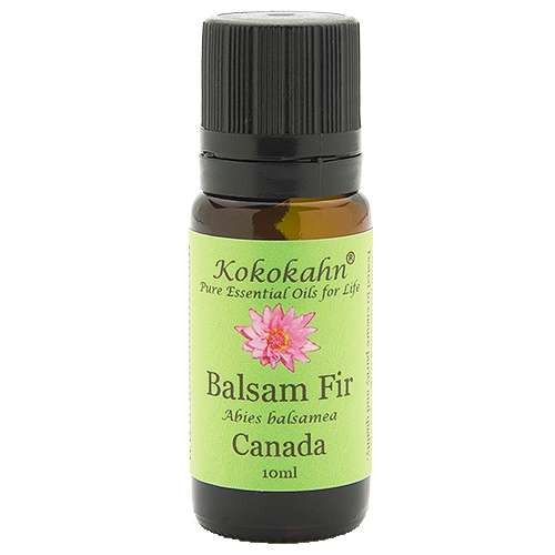 Balsam Fir Essential Oil