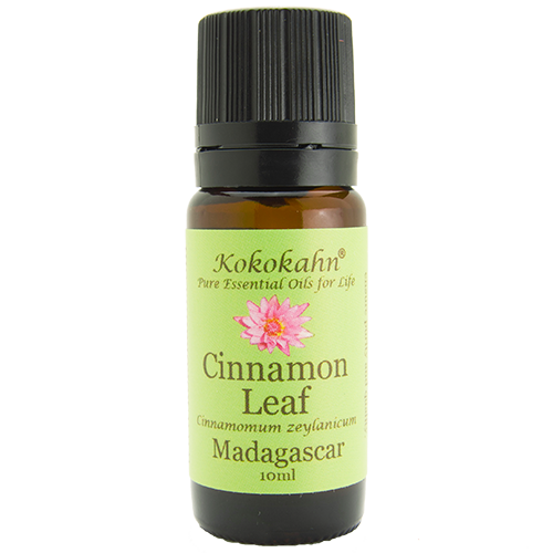 Cinnamon Leaf Essential Oil EO10-CL