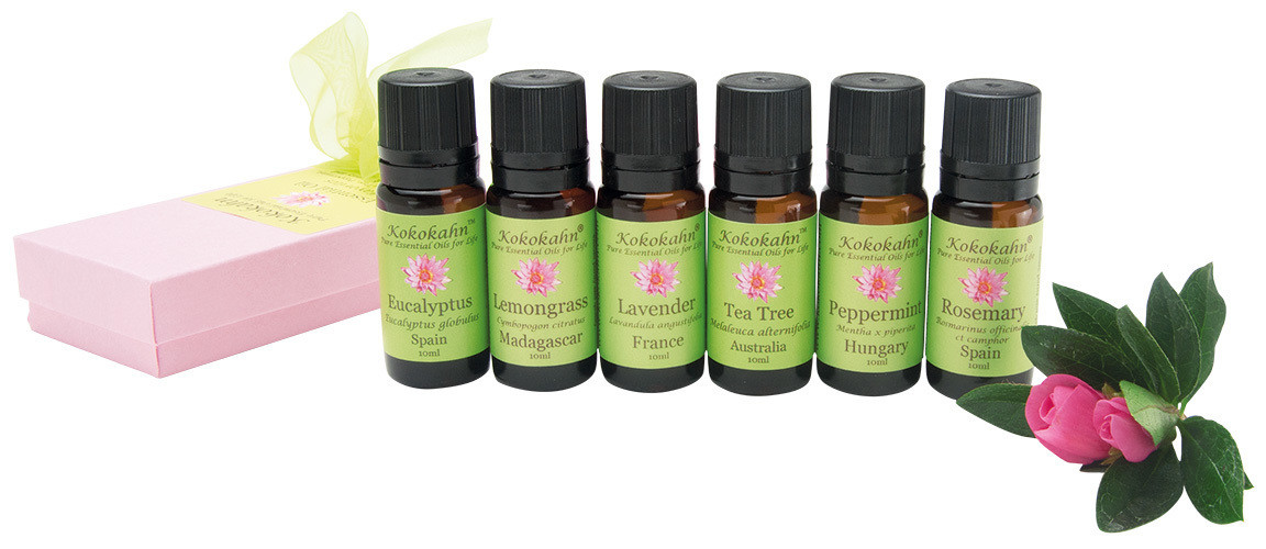 Pure Essential Oil Starter Set