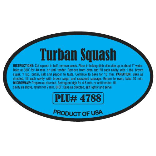Turban Squash