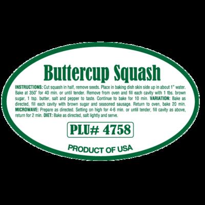 Buttercup Squash