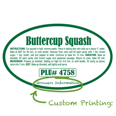 Semi-Custom Buttercup Squash