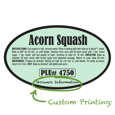 Semi-Custom Acorn Squash