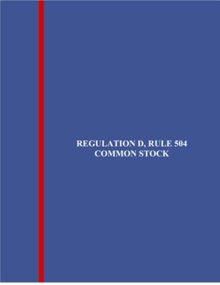 Reg. D, Rule 504 Common Stock