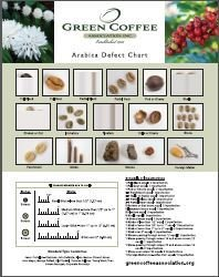 "GCA Member - Arabica Defect Chart 11"" x 14"""