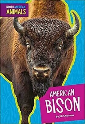 North American Animals: American Bison