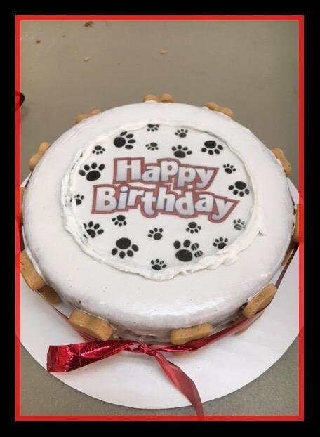 Happy Birthday Paw Print Cake -Local Pickup Only- 2 day advance notice for baking time.