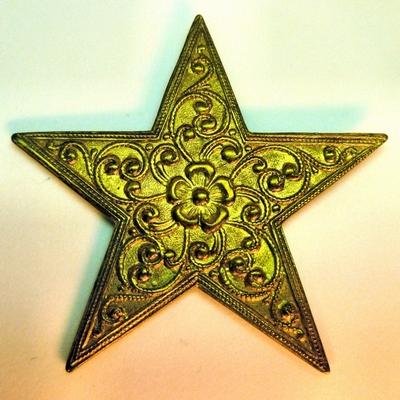One Fancy Star