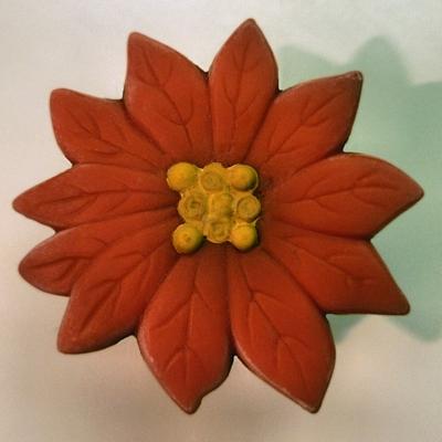 Appealing Poinsettia