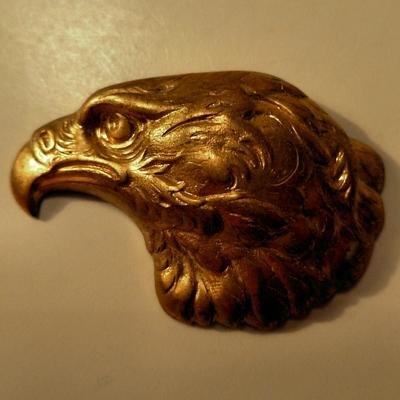 Elegant Eagle Head