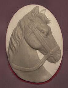 Horse Head Cameo