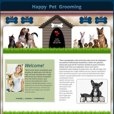 Pets Grooming Boarding Vet Veterinarian Shelter Human Society Care Animal Dog Cat Center Treatment Disease Foundation Diagnose Hospital Hospital Medicine Therapy Diet Health Clinic Medical Emergency