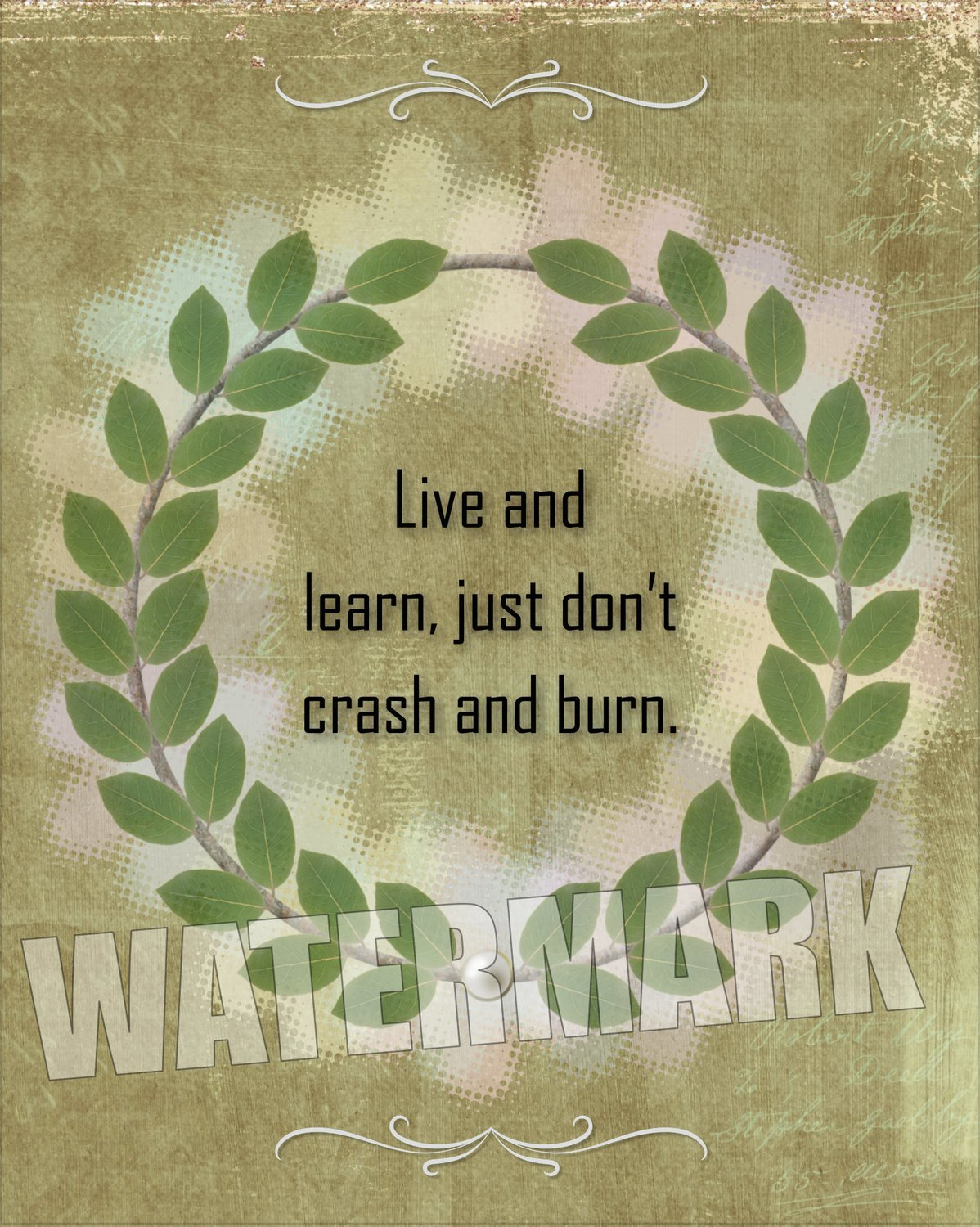 Live & learn, just don't crash a burn… Quote Message Instant Digital Download Print Wall Decor Graphic Art Printable Home Office DIY