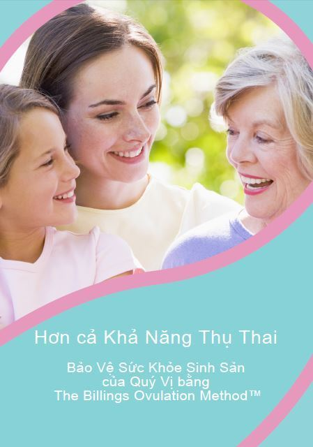 PDF eBook Safeguarding Reproductive Health Vietnamese
