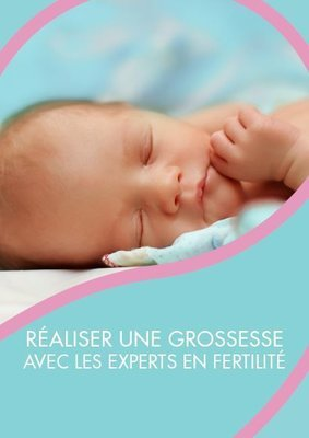 PDF eBook Achieving Pregnancy French