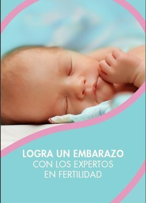 PDF eBook Achieving Pregnancy Spanish