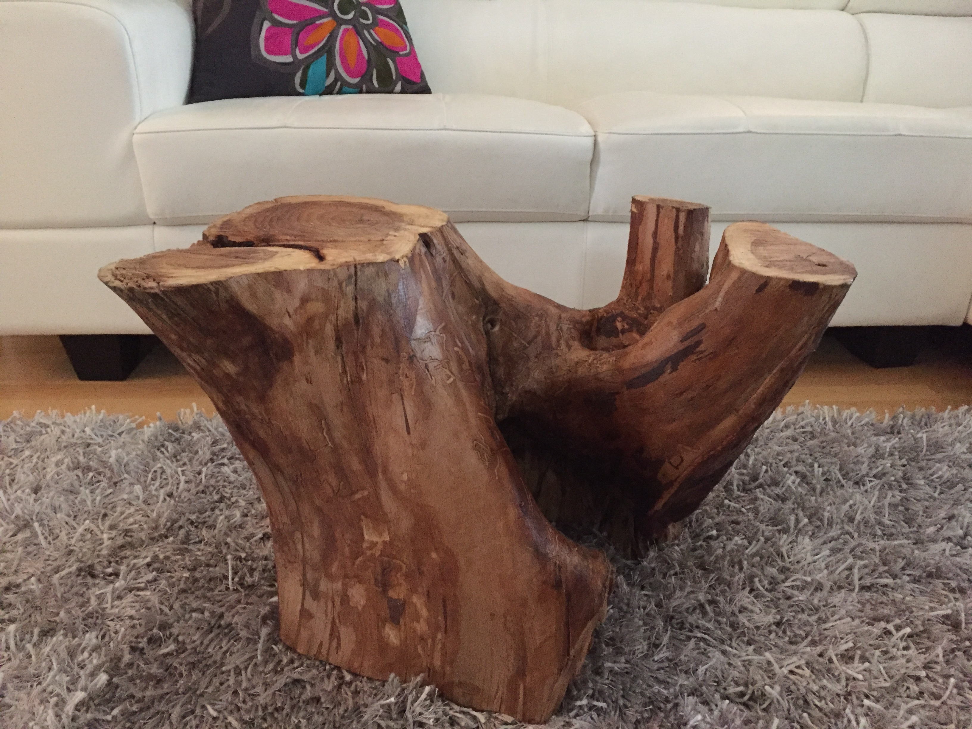 Root Coffee Table Root Tables Tree Trunk Table Stump