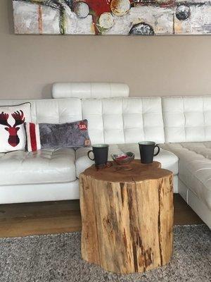 Stump Side Table, Log Side Tables, Stump Table Like Ellen, Rustic Coffee  Table, Tree Trunk Table, Log Coffee Table, Wood Block Furniture, Large Log  Coffee ...