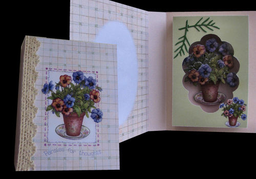 Pansy Pot Combined Card and Gift Box PNC