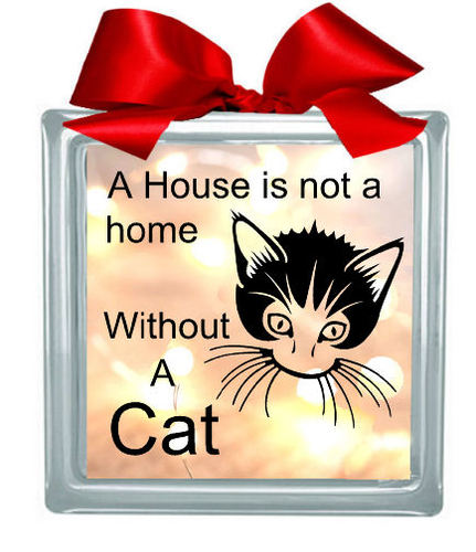 Cat 'House Is Not A Home' Glass Block Tile Design 6x6 inches