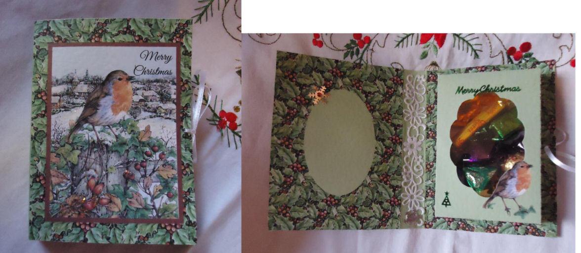 Christmas Robin  Combined Card-Box PNC