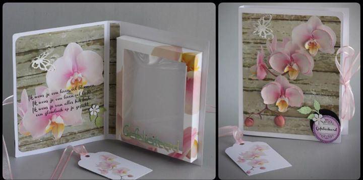 Box In A Card Folder Box Dimensions 195mm x 166mm x 20mm