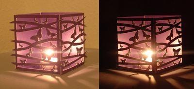 Butterfly Cloud Luminaire / Gift Box