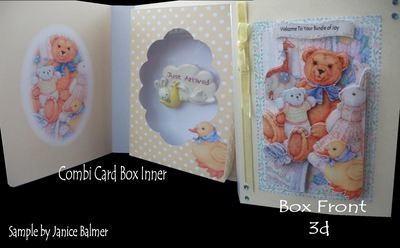 Baby Bear Combi Card Box PNC
