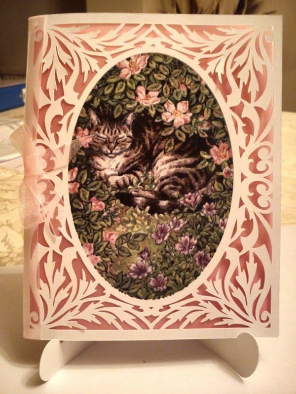 All In One Card, Flourish with  Tabby Cat PNC