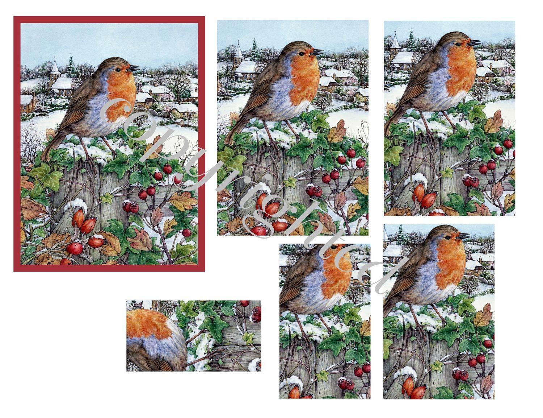 Robin Scene A4 Pyramid sheet print n cut