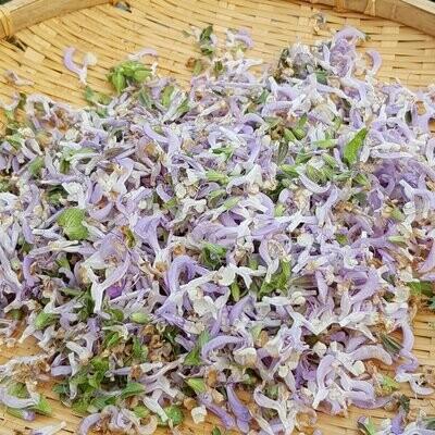 Clary Sage, Salvia Sclarea Seed