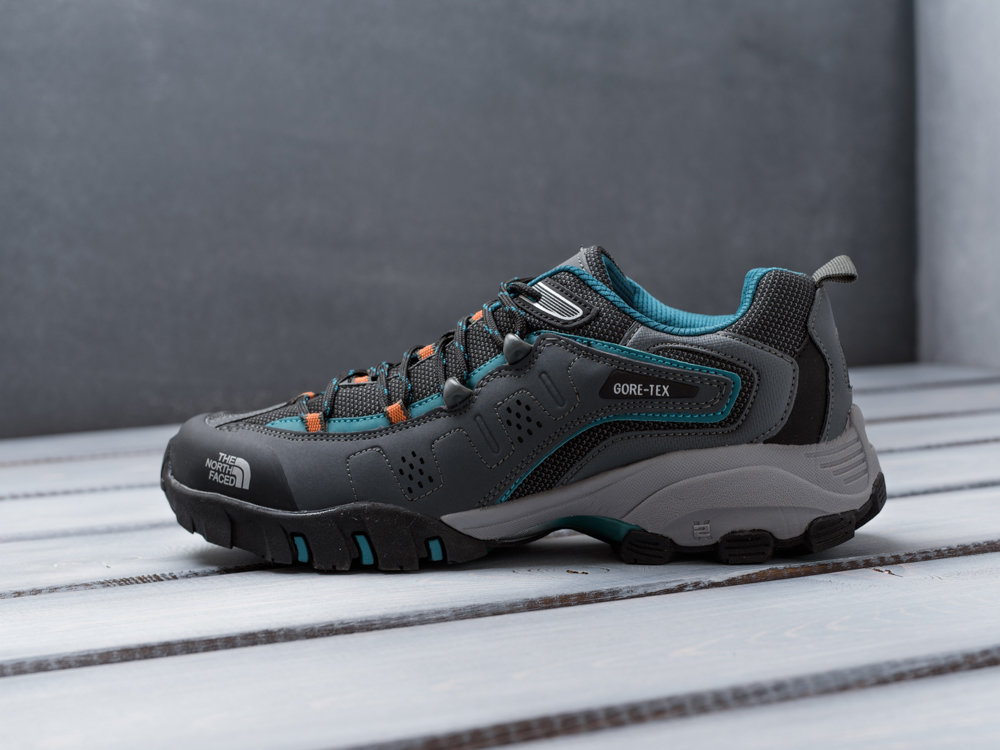 Кроссовки The North Face 9601