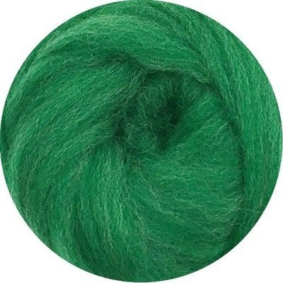 EcoSoft Wool Roving -- Grass