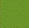 100% Wool Felt -- Spring Green