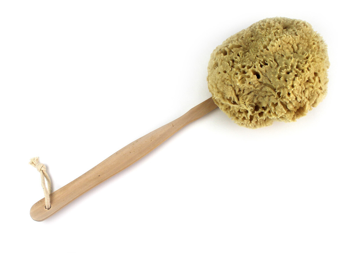 Wool Sponge on a Stick