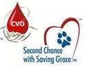 Second Chance with Saving Grace