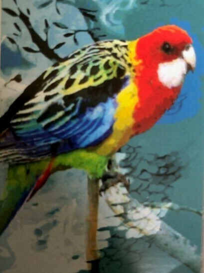 Tea Towel - Parrot - Microfibre & Made in Australia -  A lovely gift to take or send overseas