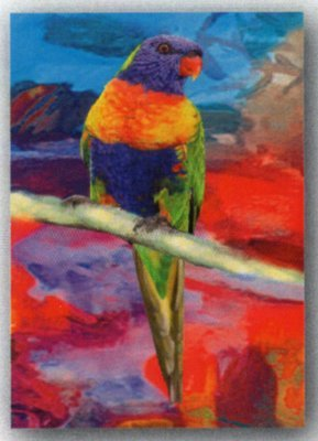 Tea Towel - Lorikeet - Microfibre & made in Australia - A lovely gift to take or send overseas