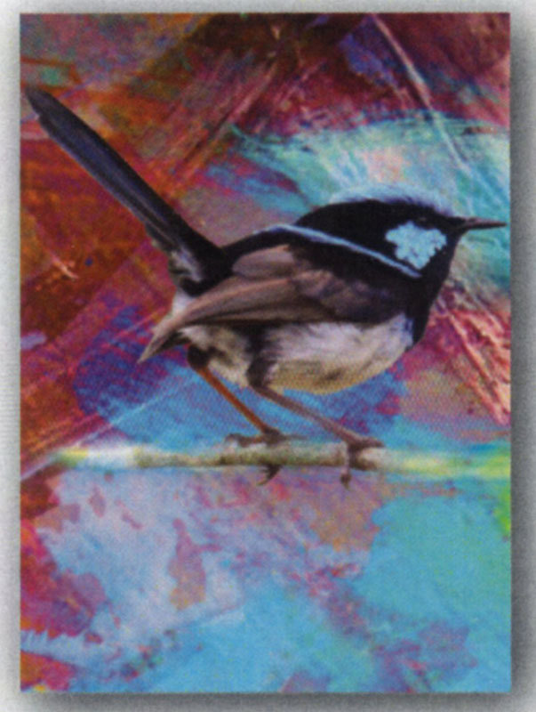 Tea Towel - Blue Wren - Microfibre & made in Australia - A lovely gift to take or send overseas
