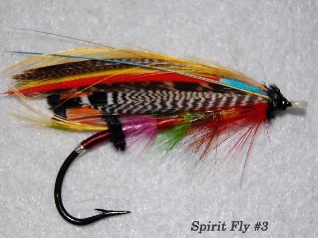 Spirit Fly #3