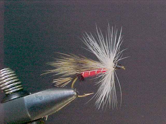 White Hackle Dry